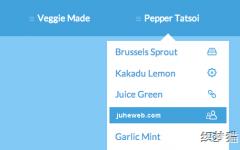 根据浏览器位置显示下拉菜单的导航菜单Tooltip Menu